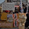 Photos: 塩取り合戦