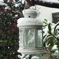 Photos: 【冬】ホワイトバレンタイン ランタン 記録的大雪[2014]