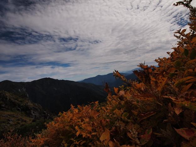 Photos: 草紅葉と乗鞍