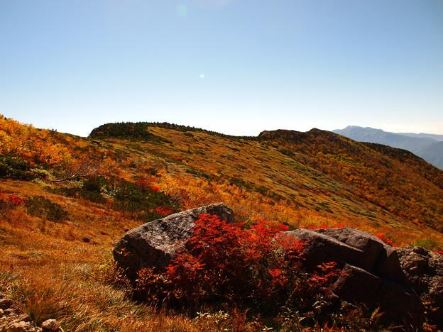 Photos: 草紅葉の丘