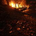 Photos: 木枯らしの夜