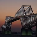 光る恐竜橋