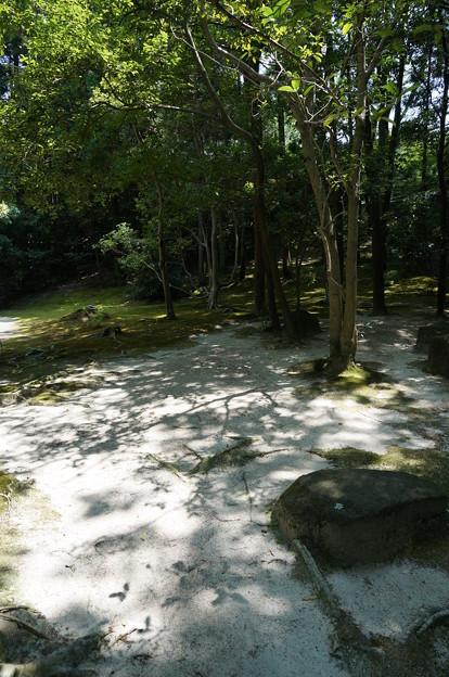 依水園15