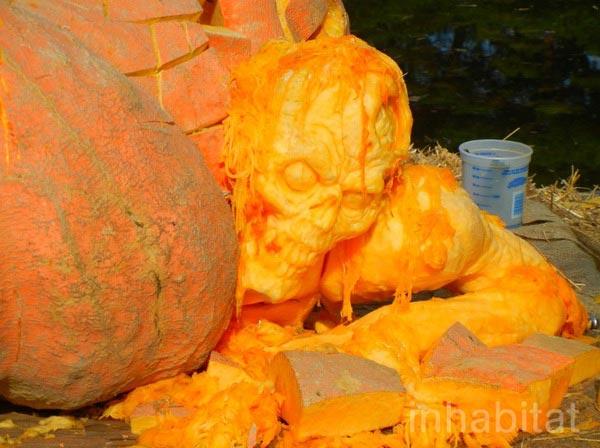 pumpkins_z5_01