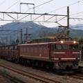 早朝の貨物列車 特急退避