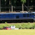 EF510 青色