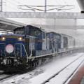 Photos: 008 白石駅を通過するトワイライトエクスプレス下り(雪中)
