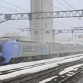 030 苗穂駅を通過する特急スーパー北斗