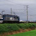 Photos: 下り貨物列車