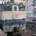 Photos: S58 2レさくら 中ピンクHM