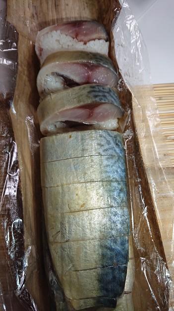 鬼鯖寿司 ぷりぷりの鯖