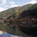 Photos: 対岸の紅葉