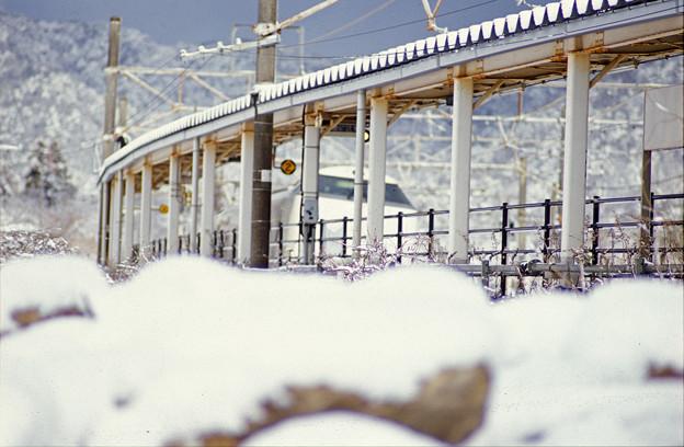雪の新疋田駅