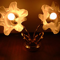 14 2003_6_23 トワイライトEXP(下り)ロイヤルおしゃれなライト