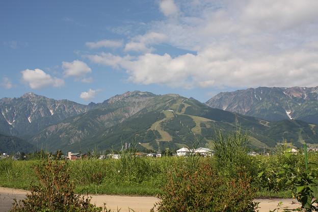 2008年8月〔44〕白馬旅行 八方尾根スキー場