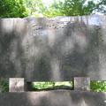 2008年8月〔54-2〕白馬旅行 白線流し石碑「早春物語」(妻撮影)
