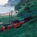 1986年8月山陰旅032 DD51(再スキャン)
