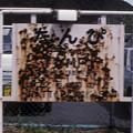 1986年8月山陰旅053 若桜線 丹比駅名標(再スキャン)