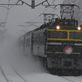雪の上を走るTW