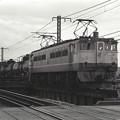 1986年頃 下り貨物列車 EF65-1000前期型