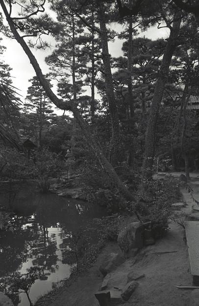 1986年頃 倉敷のどこかだったような・・・新渓園でした