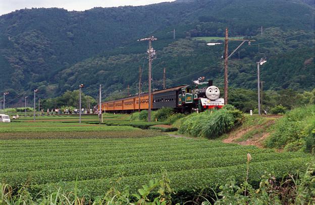 緑トーマス(上り) 抜里~家山