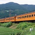 レトロ客車(柿色)