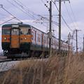 Photos: 1986年頃 115系 庭瀬~中庄(中庄寄り)