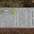旧北陸線 山中信号場跡 待避線跡地