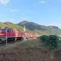 EF510貨物列車