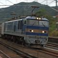 【ネガ】新疋田駅 EF510青釜
