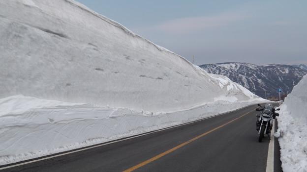 写真: 蔵王エコーライン 雪の壁