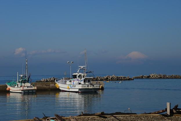 写真: 春の漁港