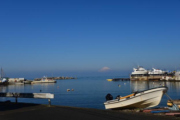 写真: 春の漁港2