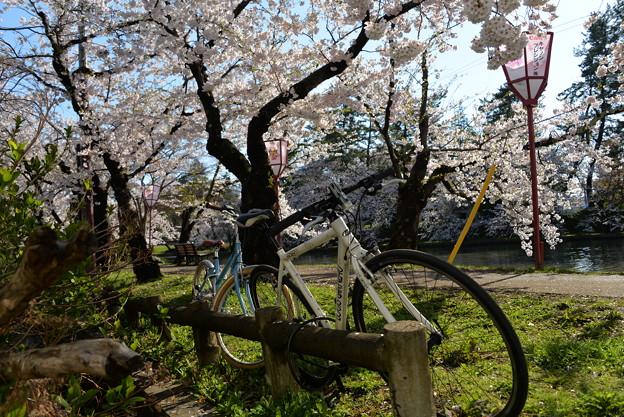 Photos: 自転車に乗って・・・