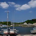 写真: 初夏の漁港