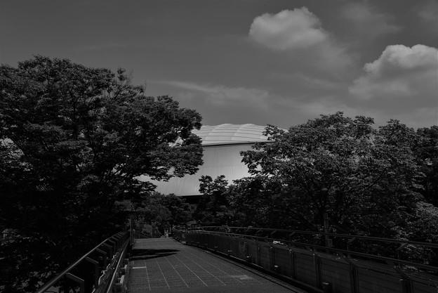 写真: ド-ムへの道