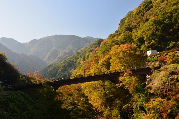 写真: 檜原村散歩