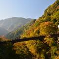 檜原村散歩