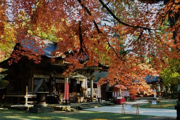 写真: 宝登山神社(2017秋)