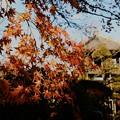 写真: 小川町散歩