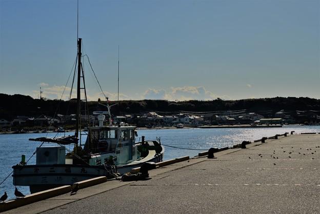 写真: 午後の漁港