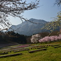 Photos: 秩父の春
