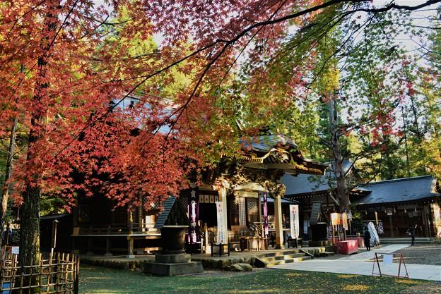 宝登山神社(2018秋)