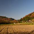 写真: 晩秋の里2