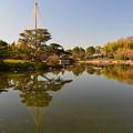 Photos: 晩秋の庭園