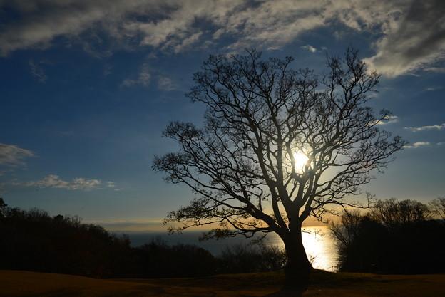 写真: 日はまた昇る?
