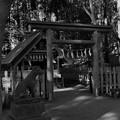 写真: 宝登山神社(奥宮)
