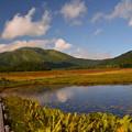 池塘と至仏山