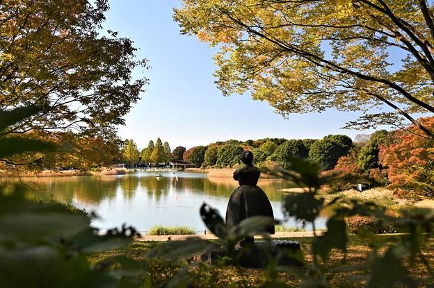 秋色の公園(2020)